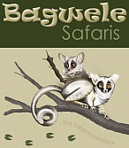 Bagwele Safaris offers Game Farm Accommodation