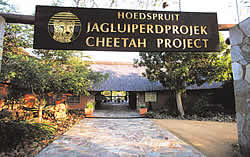 The Hoedspruit Research and Breeding Centre for endangered African wildlife species