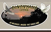 Dinonyane Lodge